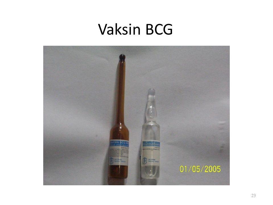 Vaksin BCG 23