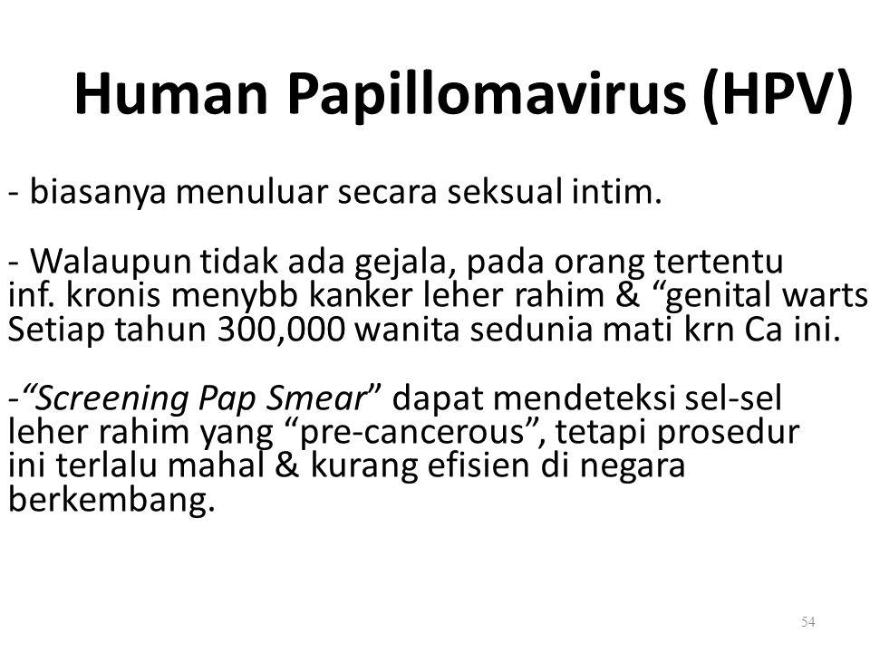 Human Papillomavirus (HPV) - biasanya menuluar secara seksual intim. - Walaupun tidak ada gejala, pada orang tertentu inf. kronis menybb kanker leher