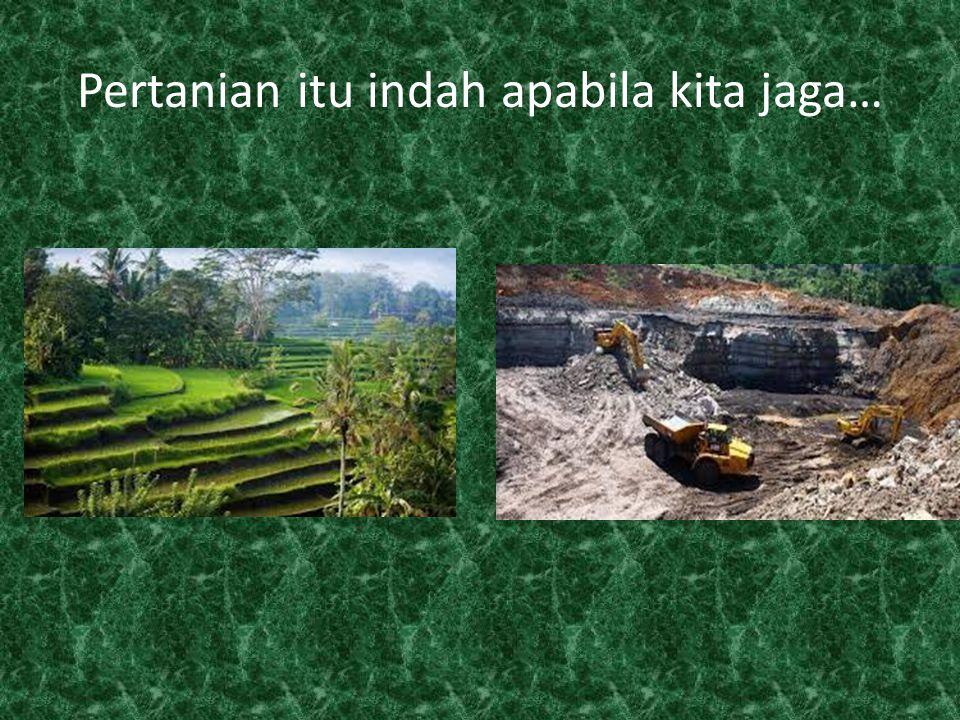 Pertanian itu indah apabila kita jaga…