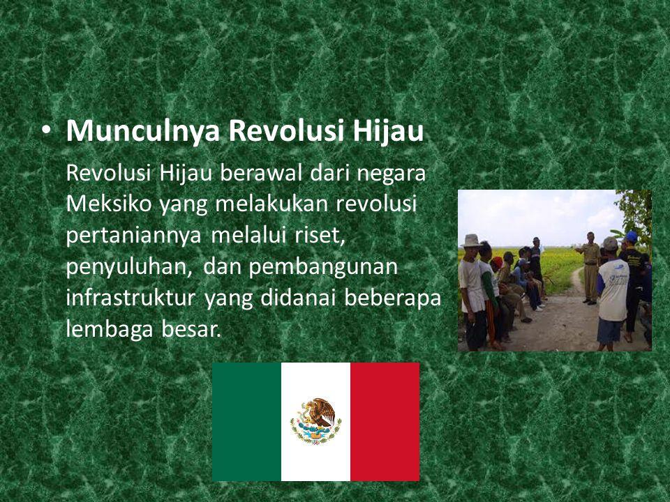 Munculnya Revolusi Hijau Revolusi Hijau berawal dari negara Meksiko yang melakukan revolusi pertaniannya melalui riset, penyuluhan, dan pembangunan infrastruktur yang didanai beberapa lembaga besar.