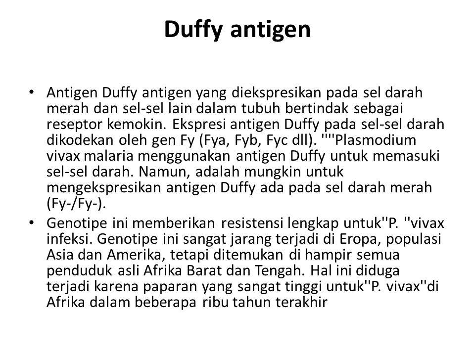 Duffy antigen Antigen Duffy antigen yang diekspresikan pada sel darah merah dan sel-sel lain dalam tubuh bertindak sebagai reseptor kemokin. Ekspresi