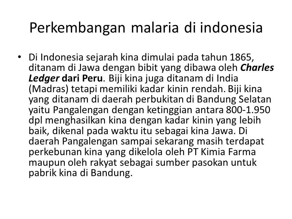 Perkembangan malaria di indonesia Di Indonesia sejarah kina dimulai pada tahun 1865, ditanam di Jawa dengan bibit yang dibawa oleh Charles Ledger dari