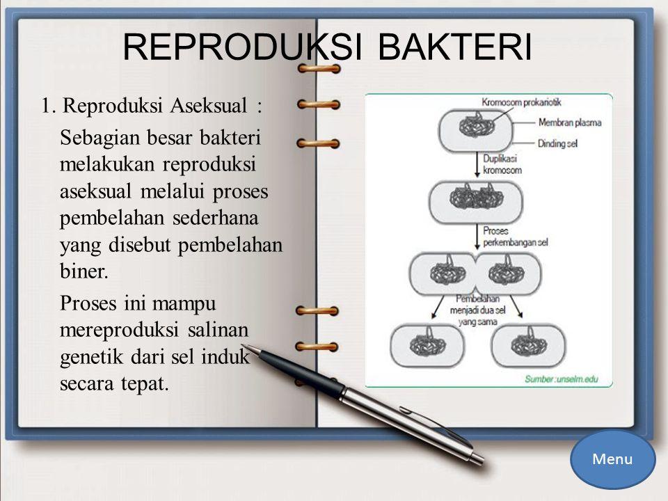 REPRODUKSI BAKTERI 1.