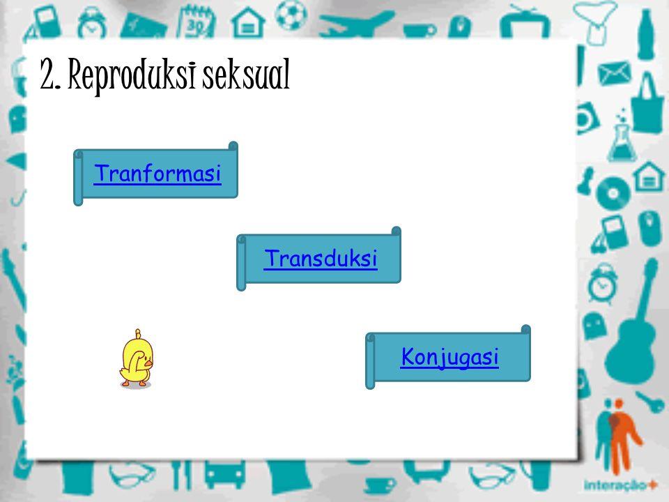 2. Reproduksi seksual Tranformasi Konjugasi Transduksi