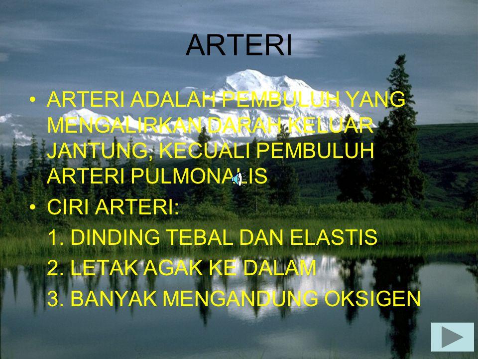 ARTERI ARTERI ADALAH PEMBULUH YANG MENGALIRKAN DARAH KELUAR JANTUNG, KECUALI PEMBULUH ARTERI PULMONALIS CIRI ARTERI: 1. DINDING TEBAL DAN ELASTIS 2. L