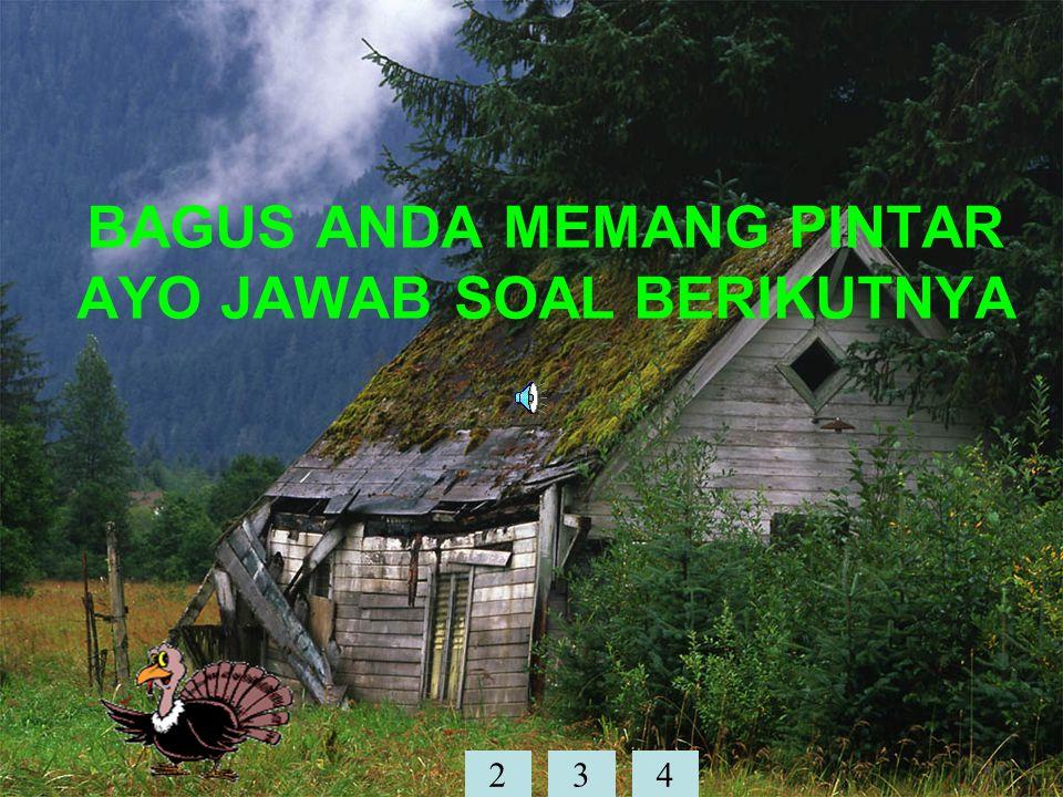 BAGUS ANDA MEMANG PINTAR AYO JAWAB SOAL BERIKUTNYA 234