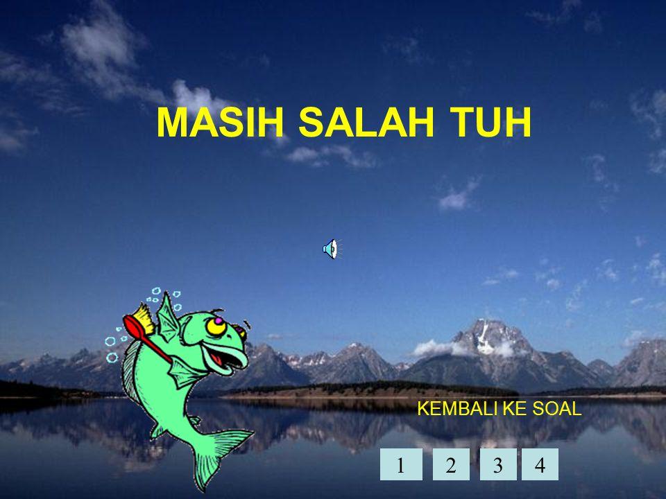 MASIH SALAH TUH KEMBALI KE SOAL 1234