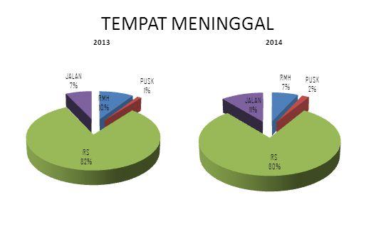 TEMPAT MENINGGAL 20132014