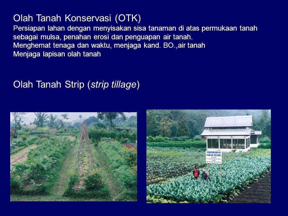 Olah Tanah Konservasi (OTK) Persiapan lahan dengan menyisakan sisa tanaman di atas permukaan tanah sebagai mulsa, penahan erosi dan penguapan air tanah.
