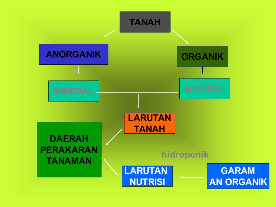 TANAH ANORGANIK ORGANIK MINERAL LARUTAN TANAH LARUTAN NUTRISI GARAM AN ORGANIK DAERAH PERAKARAN TANAMAN hidroponik
