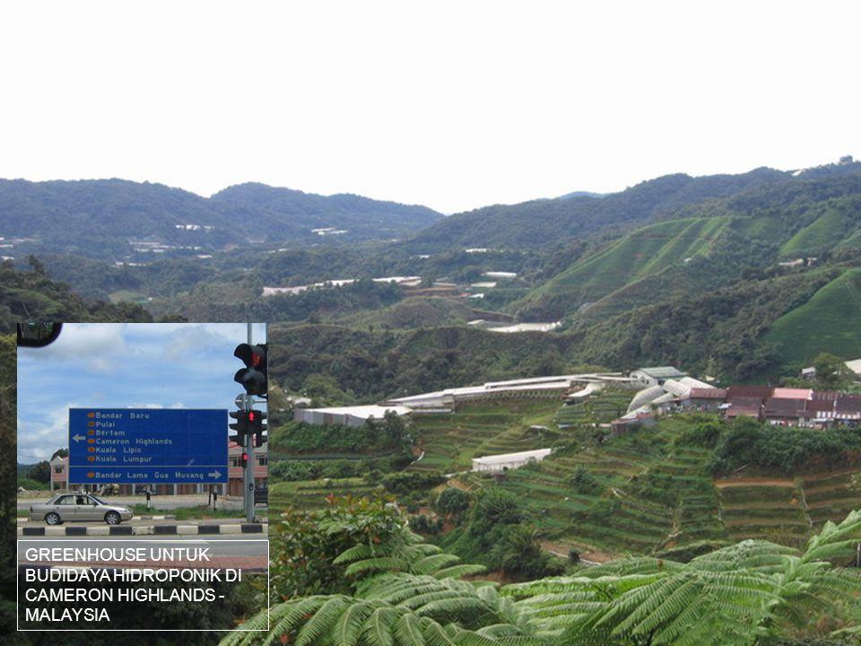 GREENHOUSE UNTUK BUDIDAYA HIDROPONIK DI CAMERON HIGHLANDS - MALAYSIA