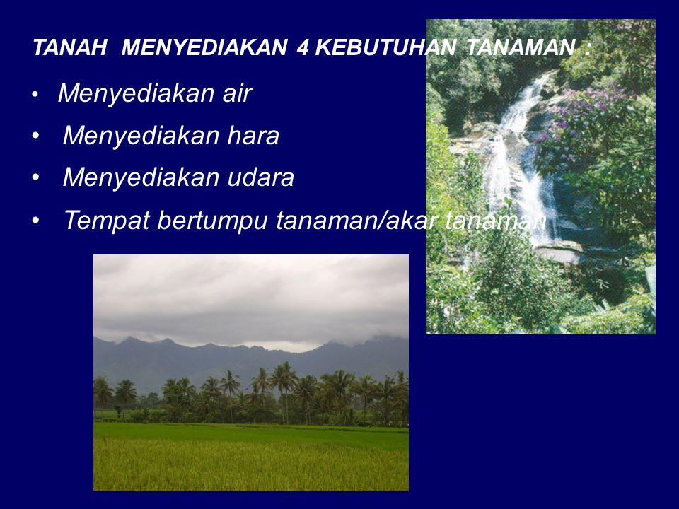 TANAH MENYEDIAKAN 4 KEBUTUHAN TANAMAN : Menyediakan air Menyediakan hara Menyediakan udara Tempat bertumpu tanaman/akar tanaman