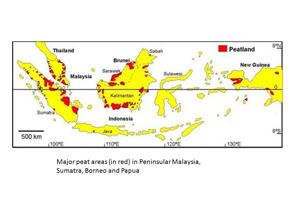 Major peat areas (in red) in Peninsular Malaysia, Sumatra, Borneo and Papua