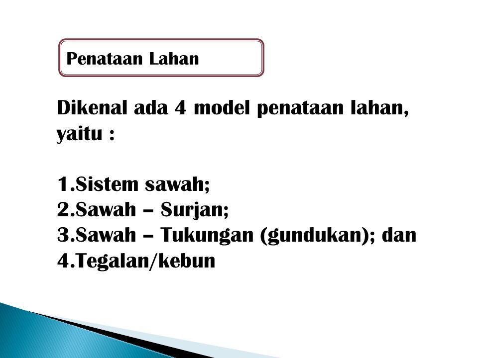 Dikenal ada 4 model penataan lahan, yaitu : 1.Sistem sawah; 2.Sawah – Surjan; 3.Sawah – Tukungan (gundukan); dan 4.Tegalan/kebun Penataan Lahan