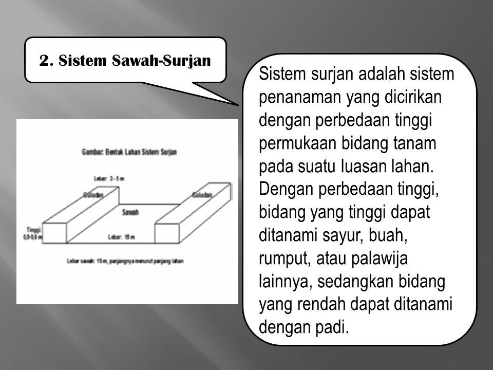Sistem surjan adalah sistem penanaman yang dicirikan dengan perbedaan tinggi permukaan bidang tanam pada suatu luasan lahan. Dengan perbedaan tinggi,