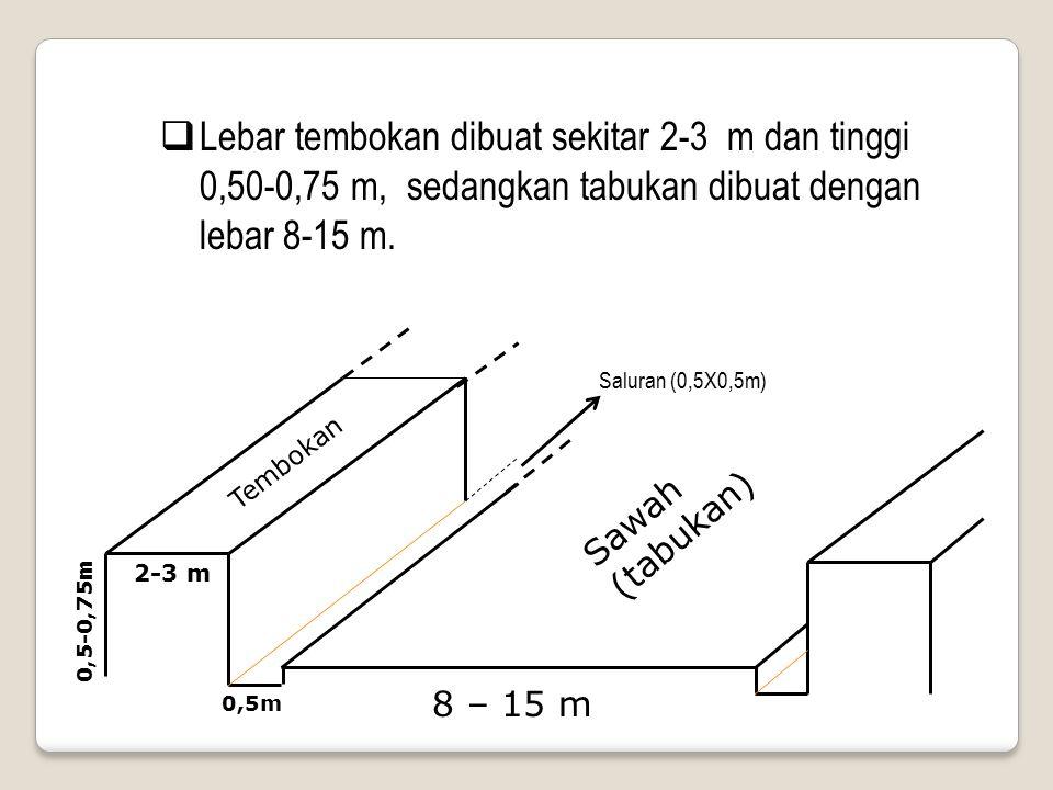  Lebar tembokan dibuat sekitar 2-3 m dan tinggi 0,50-0,75 m, sedangkan tabukan dibuat dengan lebar 8-15 m. 8 – 15 m Sawah (tabukan) Tembokan 2-3 m 0,