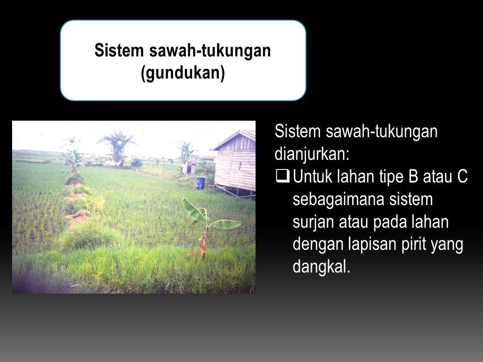 Sistem sawah-tukungan (gundukan) Sistem sawah-tukungan dianjurkan:  Untuk lahan tipe B atau C sebagaimana sistem surjan atau pada lahan dengan lapisa
