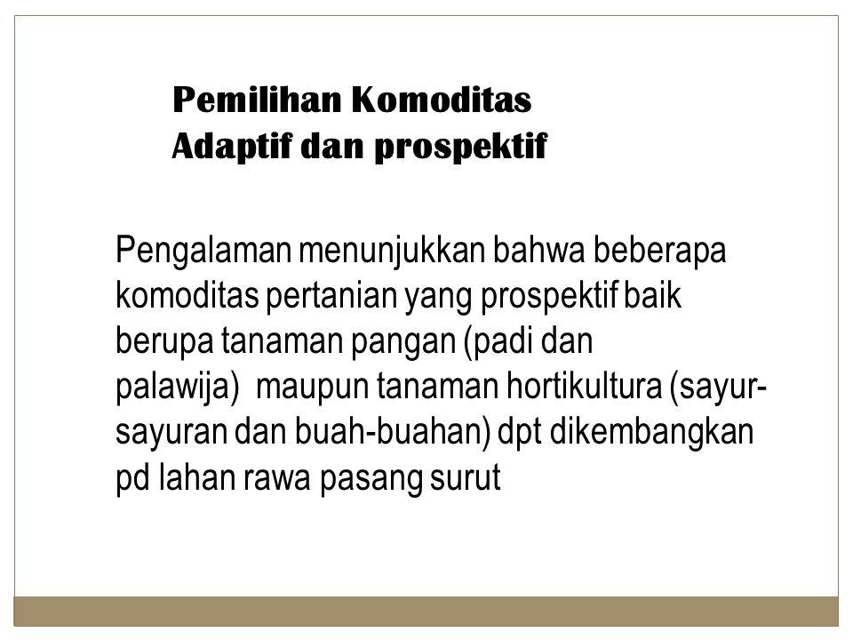 Pemilihan Komoditas Adaptif dan prospektif Pengalaman menunjukkan bahwa beberapa komoditas pertanian yang prospektif baik berupa tanaman pangan (padi