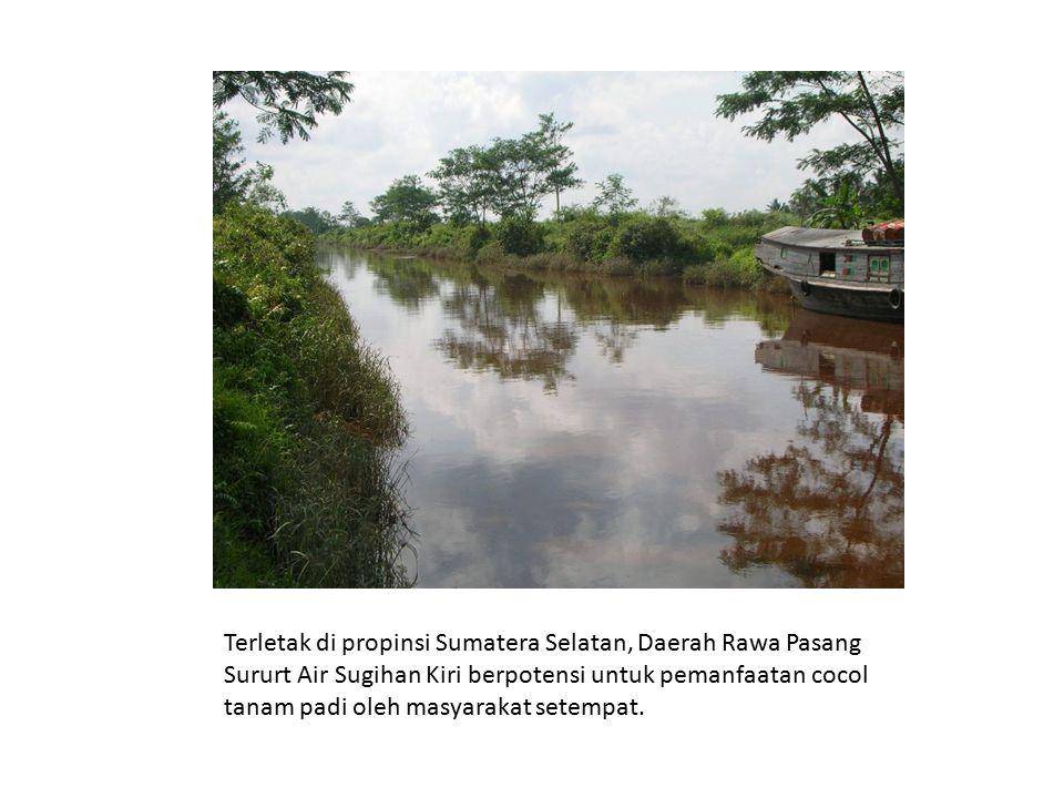Terletak di propinsi Sumatera Selatan, Daerah Rawa Pasang Sururt Air Sugihan Kiri berpotensi untuk pemanfaatan cocol tanam padi oleh masyarakat setemp
