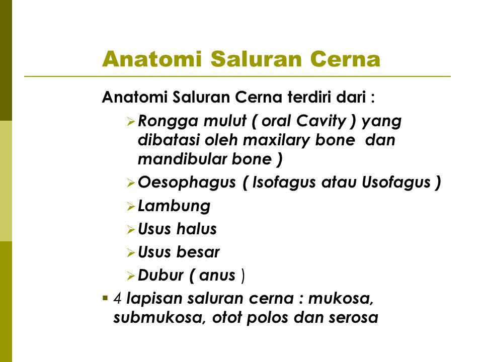 Anatomi Saluran Cerna Anatomi Saluran Cerna terdiri dari :  Rongga mulut ( oral Cavity ) yang dibatasi oleh maxilary bone dan mandibular bone )  Oes