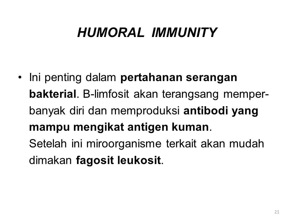 HUMORAL IMMUNITY Ini penting dalam pertahanan serangan bakterial. B-limfosit akan terangsang memper- banyak diri dan memproduksi antibodi yang mampu m