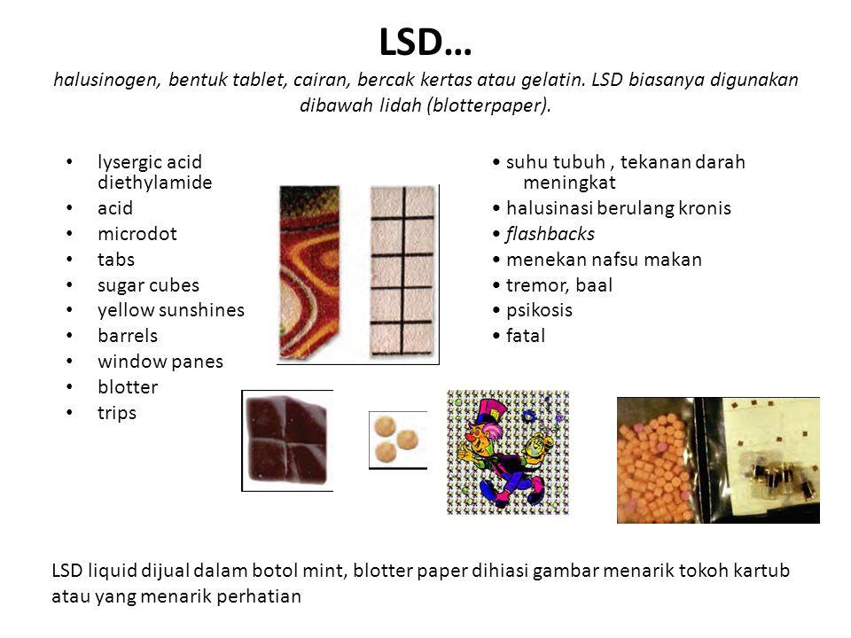 LSD… halusinogen, bentuk tablet, cairan, bercak kertas atau gelatin. LSD biasanya digunakan dibawah lidah (blotterpaper). lysergic acid diethylamide a