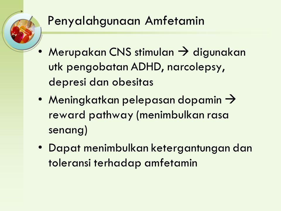Penyalahgunaan Amfetamin Merupakan CNS stimulan  digunakan utk pengobatan ADHD, narcolepsy, depresi dan obesitas Meningkatkan pelepasan dopamin  reward pathway (menimbulkan rasa senang) Dapat menimbulkan ketergantungan dan toleransi terhadap amfetamin