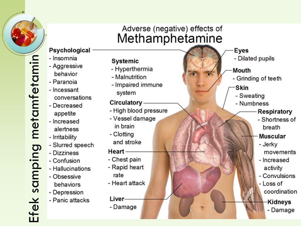 Efek samping metamfetamin