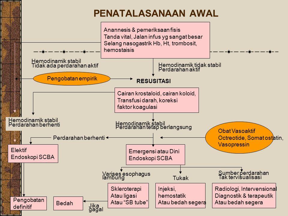 PENATALASANAAN AWAL Anannesis & pemeriksaan fisis Tanda vital, Jalan infus yg sangat besar Selang nasogastrik Hb, Ht, trombosit, hemostaisis Pengobata