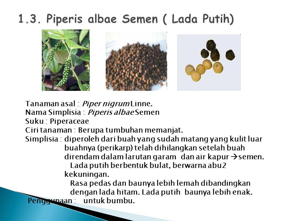 Tanaman asal : Piper nigrum Linne. Nama Simplisia : Piperis albae Semen Suku : Piperaceae Ciri tanaman : Berupa tumbuhan memanjat. Simplisia : diperol