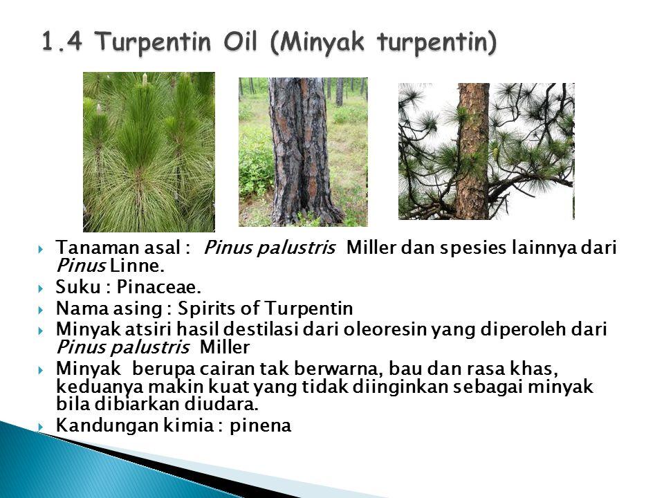  Tanaman asal : Pinus palustris Miller dan spesies lainnya dari Pinus Linne.  Suku : Pinaceae.  Nama asing : Spirits of Turpentin  Minyak atsiri h