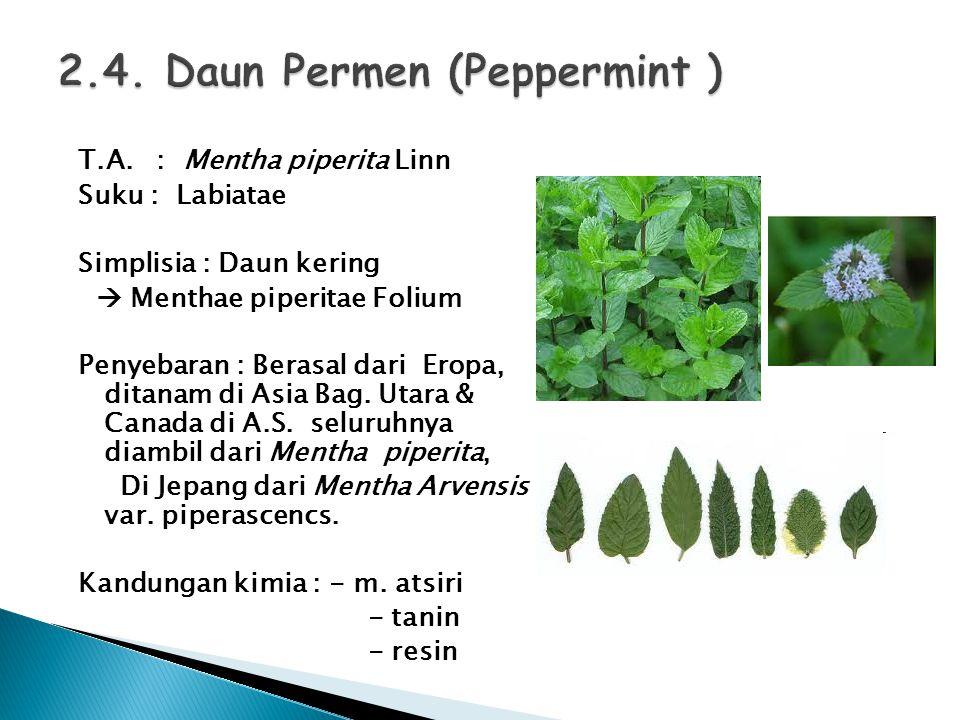 T.A. : Mentha piperita Linn Suku : Labiatae Simplisia : Daun kering  Menthae piperitae Folium Penyebaran : Berasal dari Eropa, ditanam di Asia Bag. U