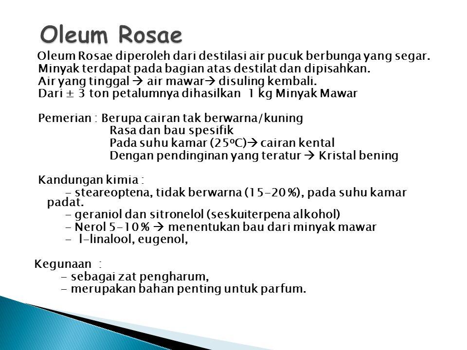 Oleum Rosae diperoleh dari destilasi air pucuk berbunga yang segar. Minyak terdapat pada bagian atas destilat dan dipisahkan. Air yang tinggal  air m