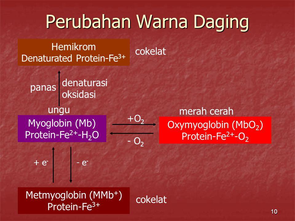 10 Perubahan Warna Daging Myoglobin (Mb) Protein-Fe 2+ -H 2 O Oxymyoglobin (MbO 2 ) Protein-Fe 2+ -O 2 Metmyoglobin (MMb + ) Protein-Fe 3+ +O 2 - O 2