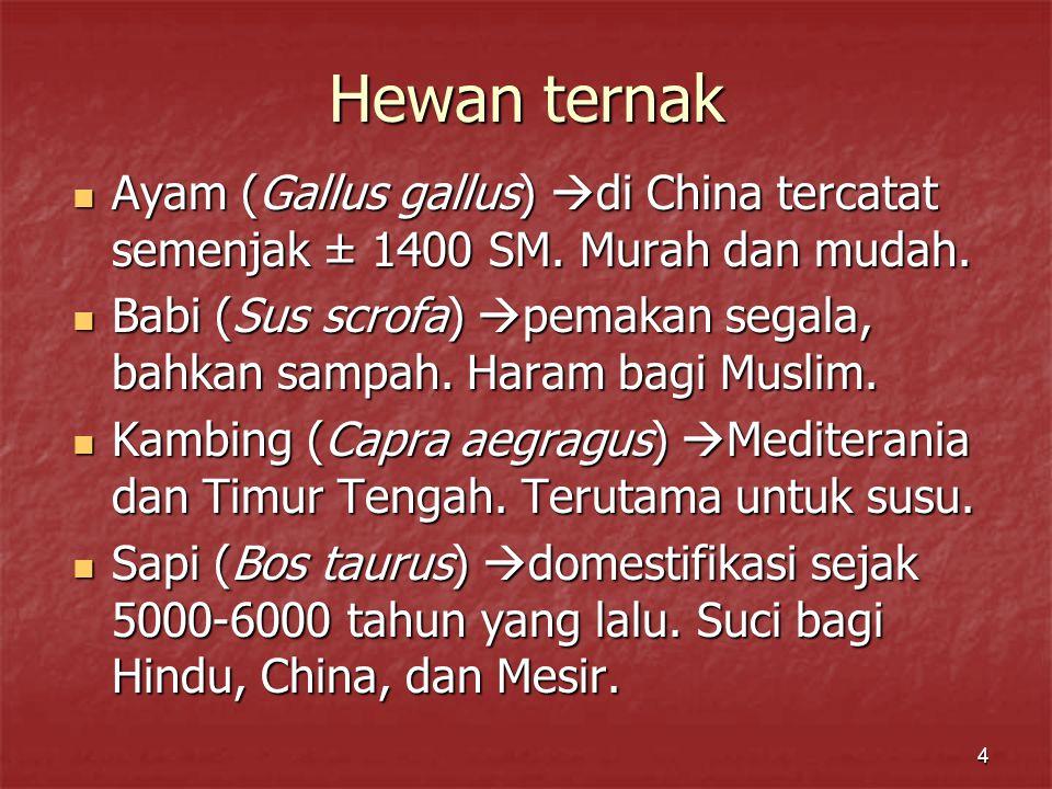 4 Hewan ternak Ayam (Gallus gallus)  di China tercatat semenjak ± 1400 SM.