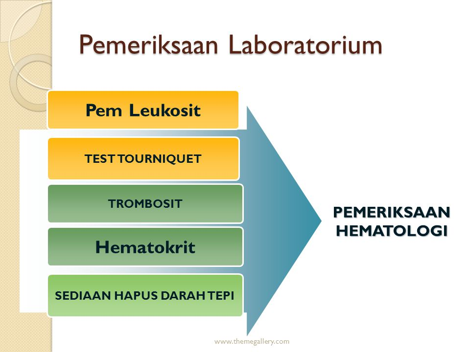 www.themegallery.com TEST TOURNIQUET TROMBOSIT SEDIAAN HAPUS DARAH TEPI PEMERIKSAAN HEMATOLOGI Pemeriksaan Laboratorium Pem Leukosit Hematokrit