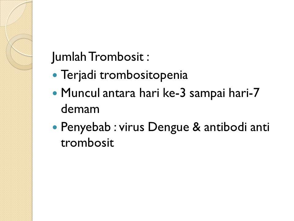 Jumlah Trombosit : Terjadi trombositopenia Muncul antara hari ke-3 sampai hari-7 demam Penyebab : virus Dengue & antibodi anti trombosit