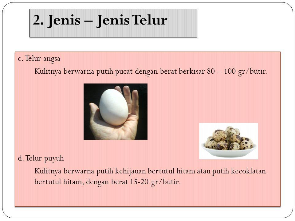 c.Telur angsa Kulitnya berwarna putih pucat dengan berat berkisar 80 – 100 gr/butir.