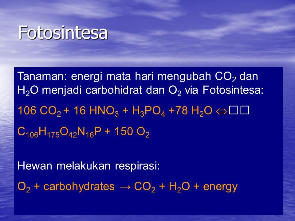 Fotosintesa Tanaman: energi mata hari mengubah CO 2 dan H 2 O menjadi carbohidrat dan O 2 via Fotosintesa: 106 CO 2 + 16 HNO 3 + H 3 PO 4 +78 H 2 O  C 106 H 175 O 42 N 16 P + 150 O 2 Hewan melakukan respirasi: O 2 + carbohydrates → CO 2 + H 2 O + energy