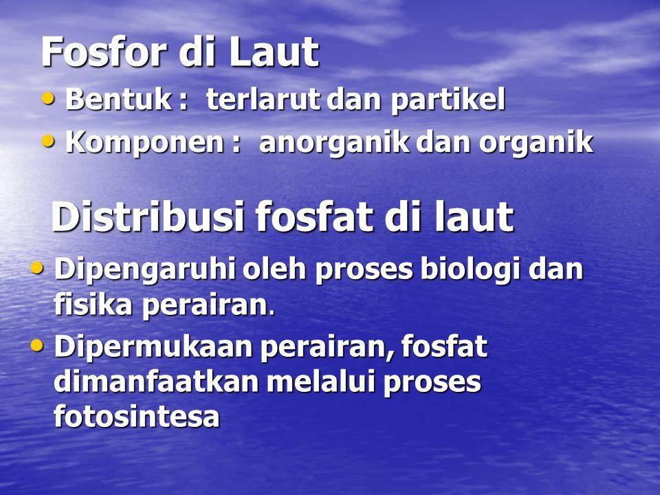 Fosfor di Laut Bentuk : terlarut dan partikel Bentuk : terlarut dan partikel Komponen : anorganik dan organik Komponen : anorganik dan organik Distribusi fosfat di laut Dipengaruhi oleh proses biologi dan fisika perairan.