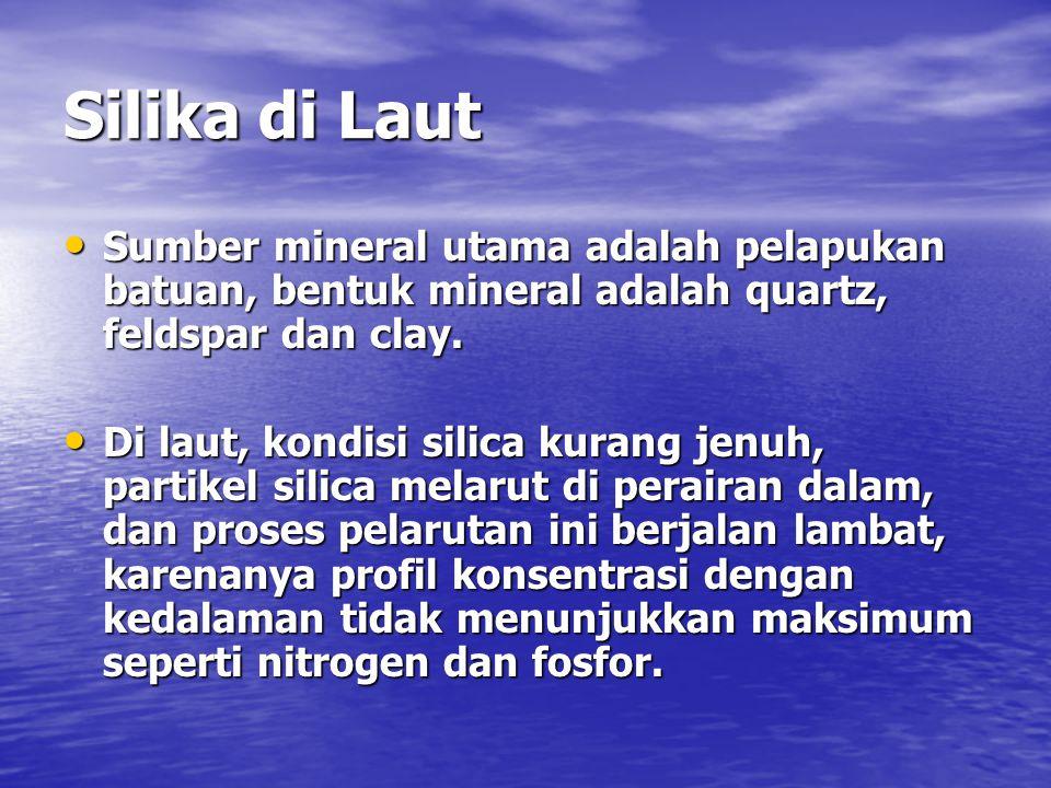 Silika di Laut Sumber mineral utama adalah pelapukan batuan, bentuk mineral adalah quartz, feldspar dan clay. Sumber mineral utama adalah pelapukan ba