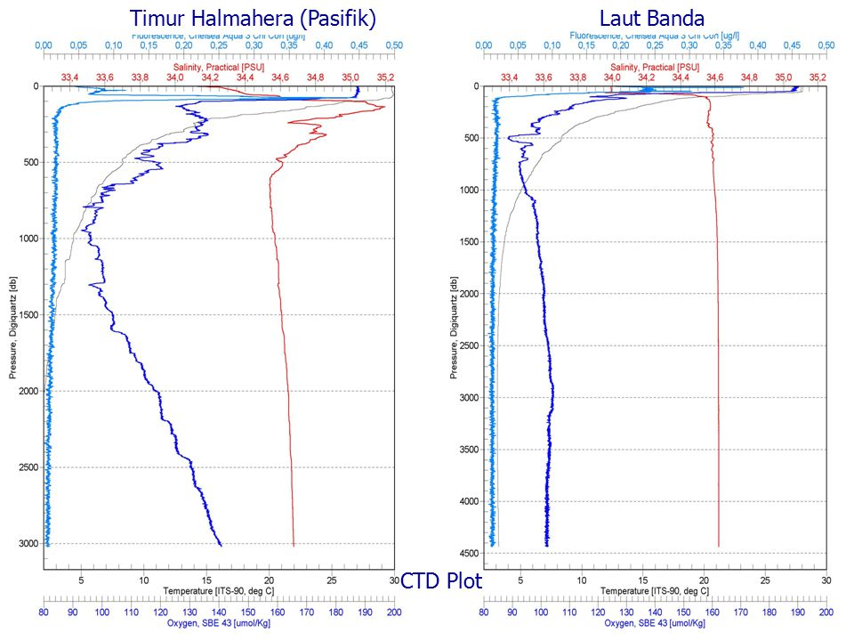 Timur Halmahera (Pasifik)Laut Banda CTD Plot