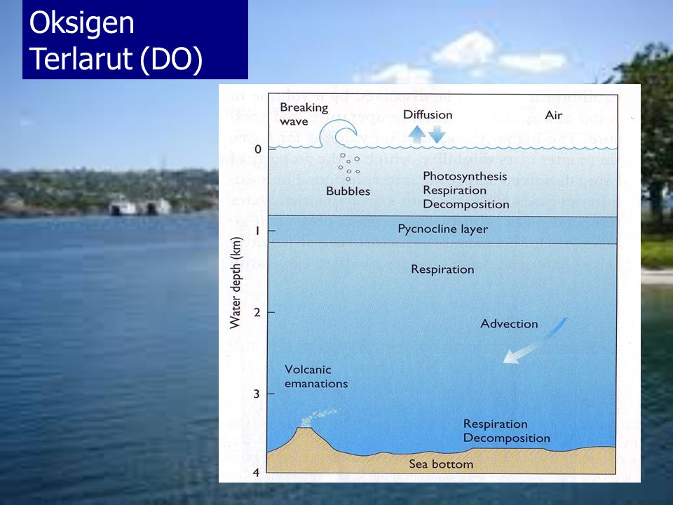 Difinisi berat dalam gram garam terlarut dalam satu kilogram air laut, dimana semua bromida dan iodida digantikan dengan jumlah equivalen chlorida, dan semua karbonat digantikan dengan jumlah equivalen oksida (Forch, Knudsen dan Sorensen)