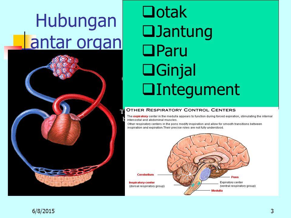 6/8/20153 Hubungan antar organ m  otak  Jantung  Paru  Ginjal  Integument