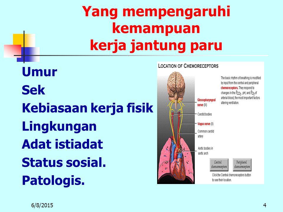 6/8/20154 Yang mempengaruhi kemampuan kerja jantung paru Umur Sek Kebiasaan kerja fisik Lingkungan Adat istiadat Status sosial.