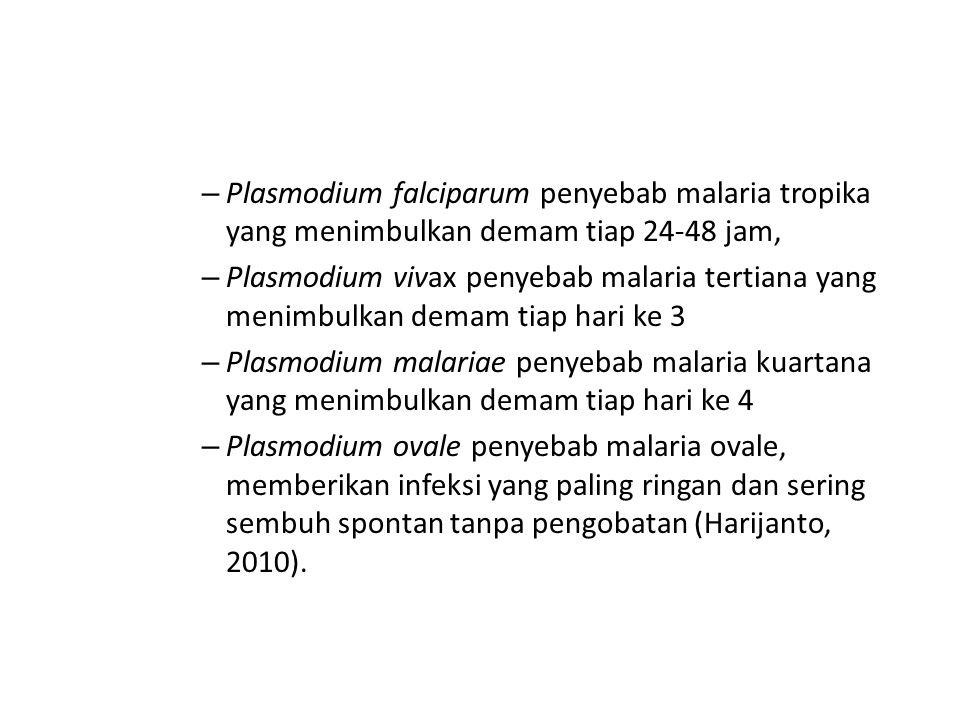 – Plasmodium falciparum penyebab malaria tropika yang menimbulkan demam tiap 24-48 jam, – Plasmodium vivax penyebab malaria tertiana yang menimbulkan demam tiap hari ke 3 – Plasmodium malariae penyebab malaria kuartana yang menimbulkan demam tiap hari ke 4 – Plasmodium ovale penyebab malaria ovale, memberikan infeksi yang paling ringan dan sering sembuh spontan tanpa pengobatan (Harijanto, 2010).