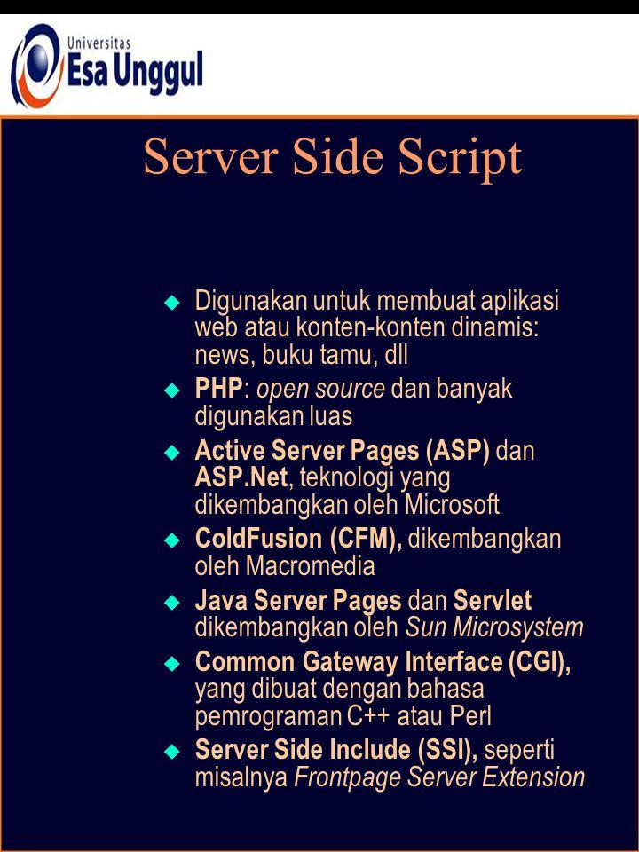 Server Side Script  Digunakan untuk membuat aplikasi web atau konten-konten dinamis: news, buku tamu, dll  PHP : open source dan banyak digunakan luas  Active Server Pages (ASP) dan ASP.Net, teknologi yang dikembangkan oleh Microsoft  ColdFusion (CFM), dikembangkan oleh Macromedia  Java Server Pages dan Servlet dikembangkan oleh Sun Microsystem  Common Gateway Interface (CGI), yang dibuat dengan bahasa pemrograman C++ atau Perl  Server Side Include (SSI), seperti misalnya Frontpage Server Extension