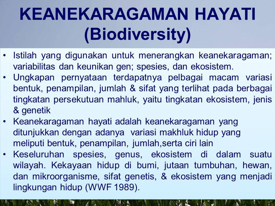 HAKEKAT KEANEKARAGAMAN HAYATI Masalah keanekaragaman hayati (kehati): berkisar pada penentuan kategori ekosistem; klasifikasi taksonomi organisme; dan arti penting variasi di antara masing-masing organisme.