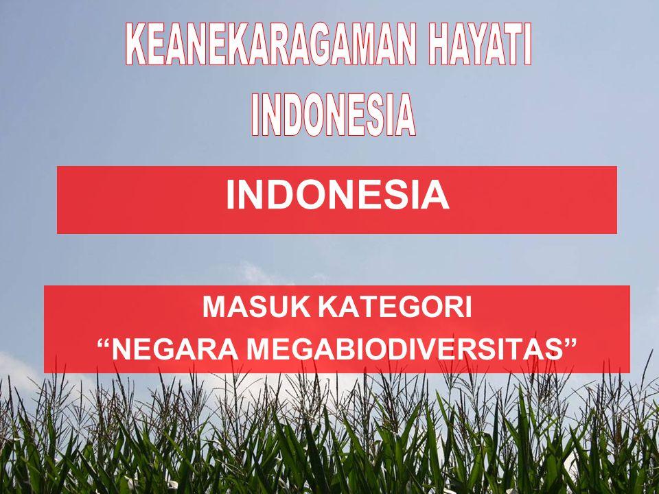 1.Adanya fauna bertipe Oriental, Australis dan peralihan 2.Memiliki tumbuhan (Flora) bertipe Malesiana 3.Memiliki hewan dan tumbuhan yang endemik 4.Memiliki hewan dan tumbuhan yang langka Keunikan keanekaragaman hayati Indonesia ditandai oleh :