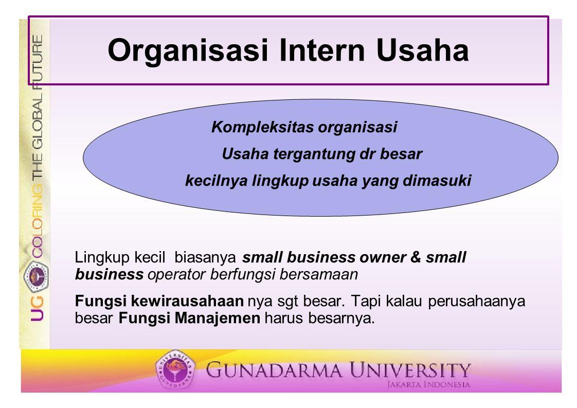 Organisasi Intern Usaha Kompleksitas organisasi Usaha tergantung dr besar kecilnya lingkup usaha yang dimasuki Lingkup kecil biasanya small business o